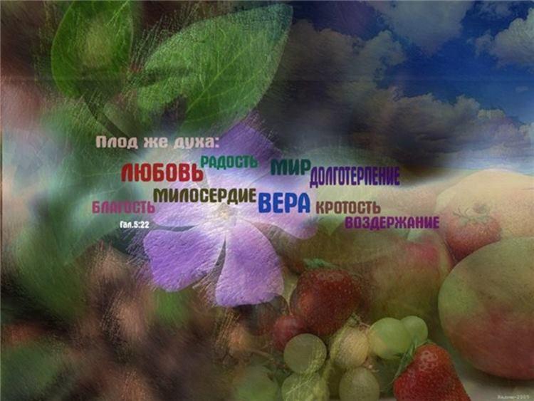 Плоди Духа